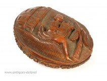 Snuffbox corozo, Female lyre nineteenth