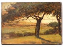 HST tablau landscape forest Fontainebleau Barbizon Doumenq painting twentieth century