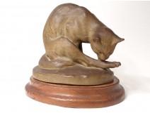 Terracotta Sculpture Charles Virion Chat Toilet Cytère Unis France Nineteenth