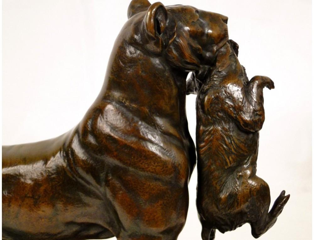 Lioness Cubs Bronze Sculpture Auguste Cain Susse Fr 232 Res