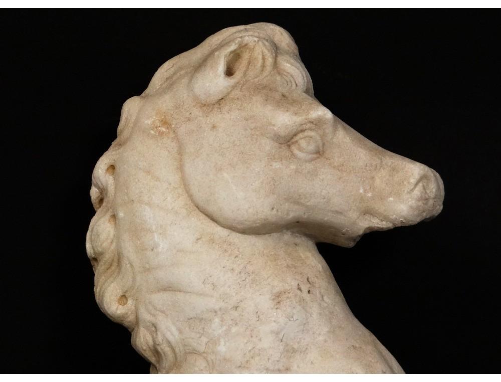 Rare Carrara Marble Sculpture Horse Horse Ancient Roman