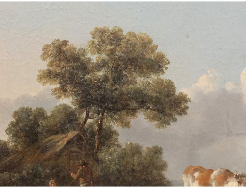 Hst Table Landscape Grazing Herd Cows Shepherd School