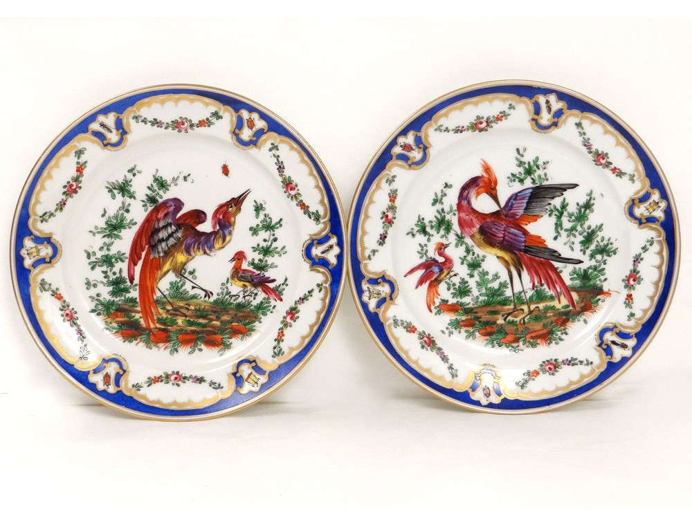 pair english porcelain plates chelsea derby birds insects. Black Bedroom Furniture Sets. Home Design Ideas