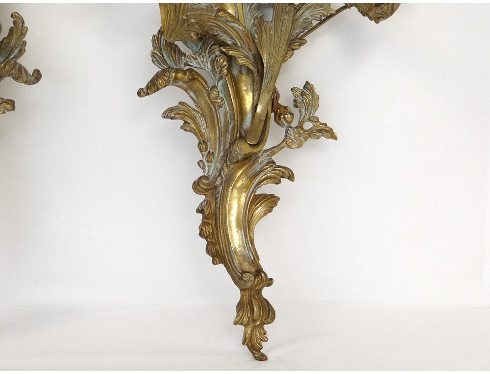 Pair large wall sconces Louis XV rococo gilt bronze foliage 19th