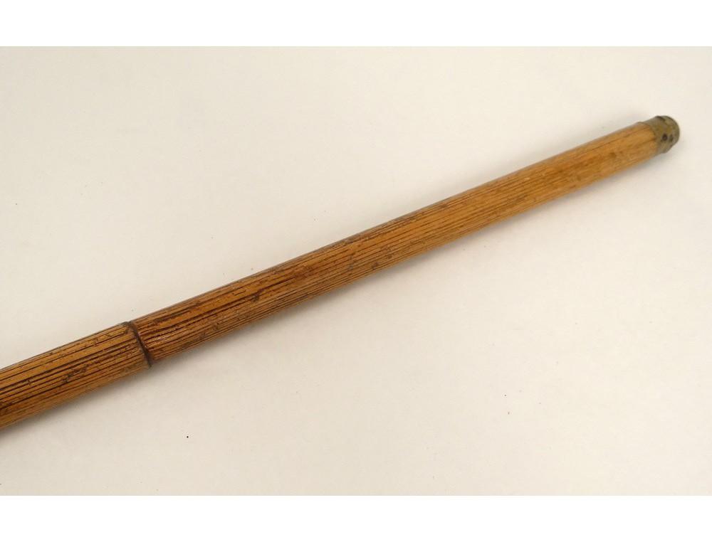 Canne acienne bois bambou pommeau sculpté tête chien boxer