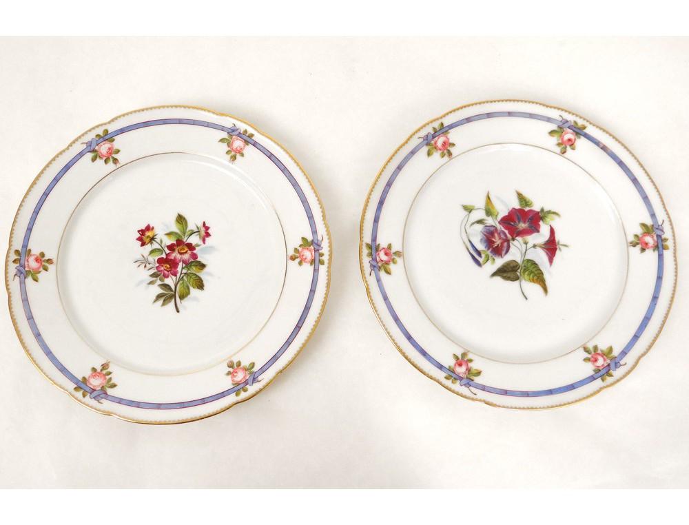 dinnerware 29 pieces of porcelain plates 19th paris botanical flowers. Black Bedroom Furniture Sets. Home Design Ideas