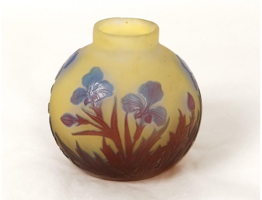 Superb small vase glass paste ball Emile Gallé Art Nouveau XIXth ...
