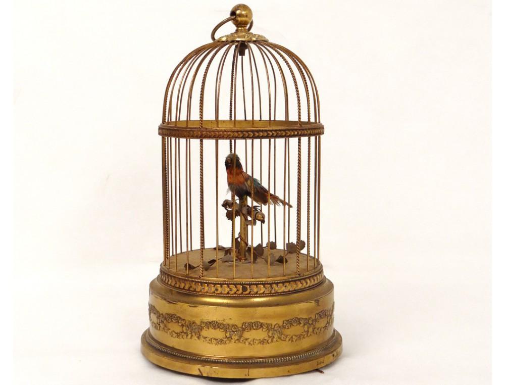 automate oiseau chanteur siffleur cage laiton dor bo te musique france xx. Black Bedroom Furniture Sets. Home Design Ideas