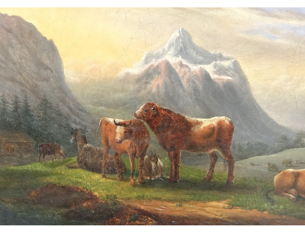 Hst Mountain Landscape Herd Cows Ecole Suisse Italian
