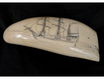Scrimshaw whale tooth walrus ivory engraved nineteenth boat sailing ship