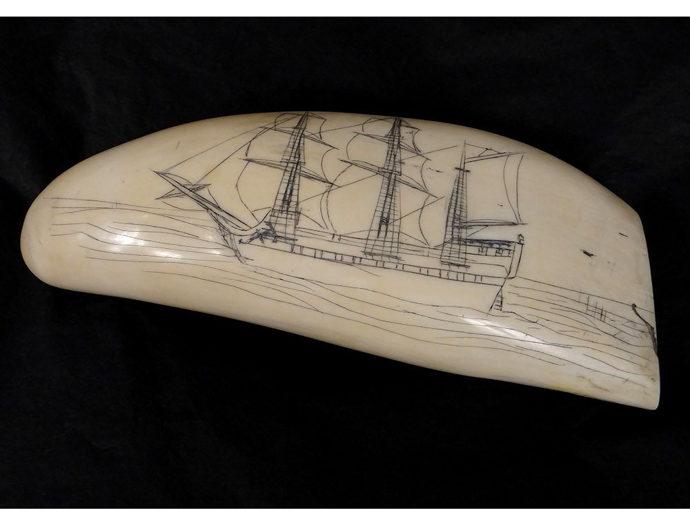 Scrimshaw Whale Tooth Walrus Ivory Engraved Nineteenth