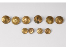 Lot 10 buttons of old livery golden brass monogram FP XIXth century